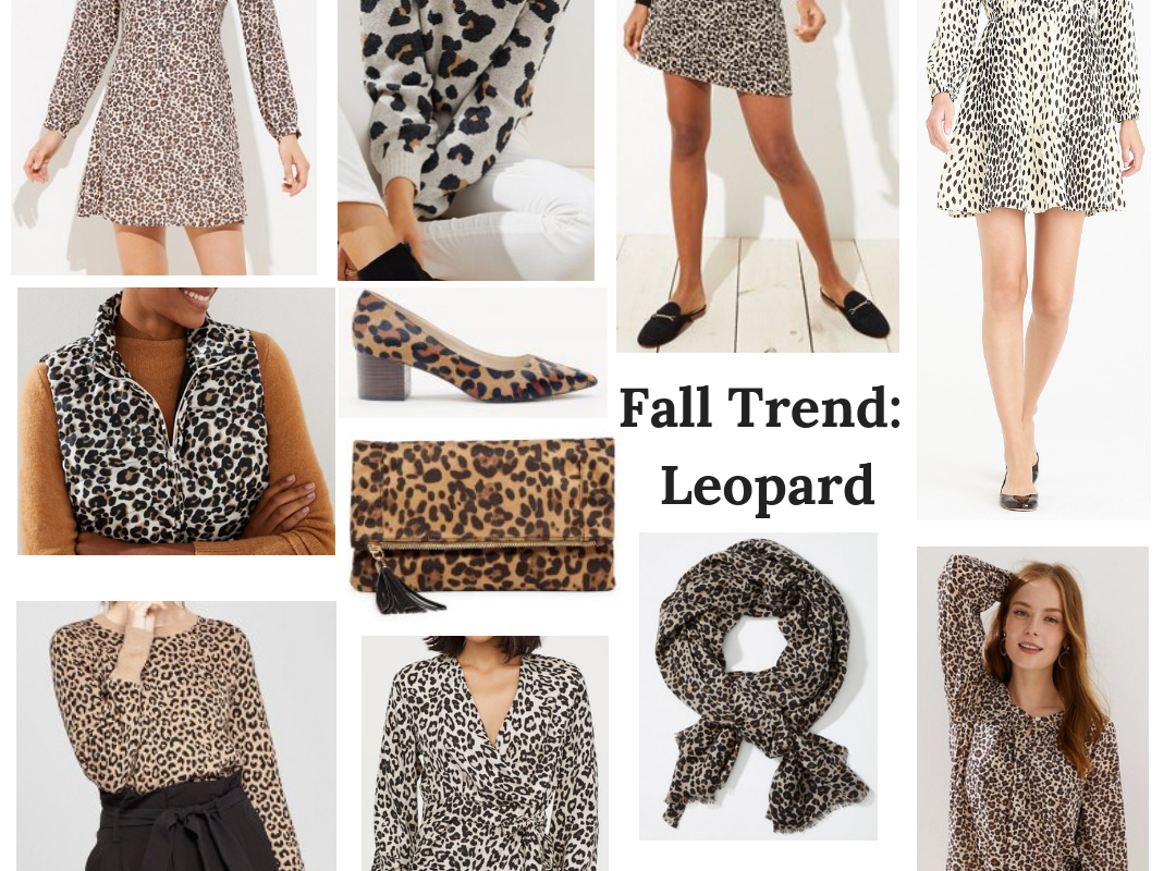 Fall Trend: Leopard