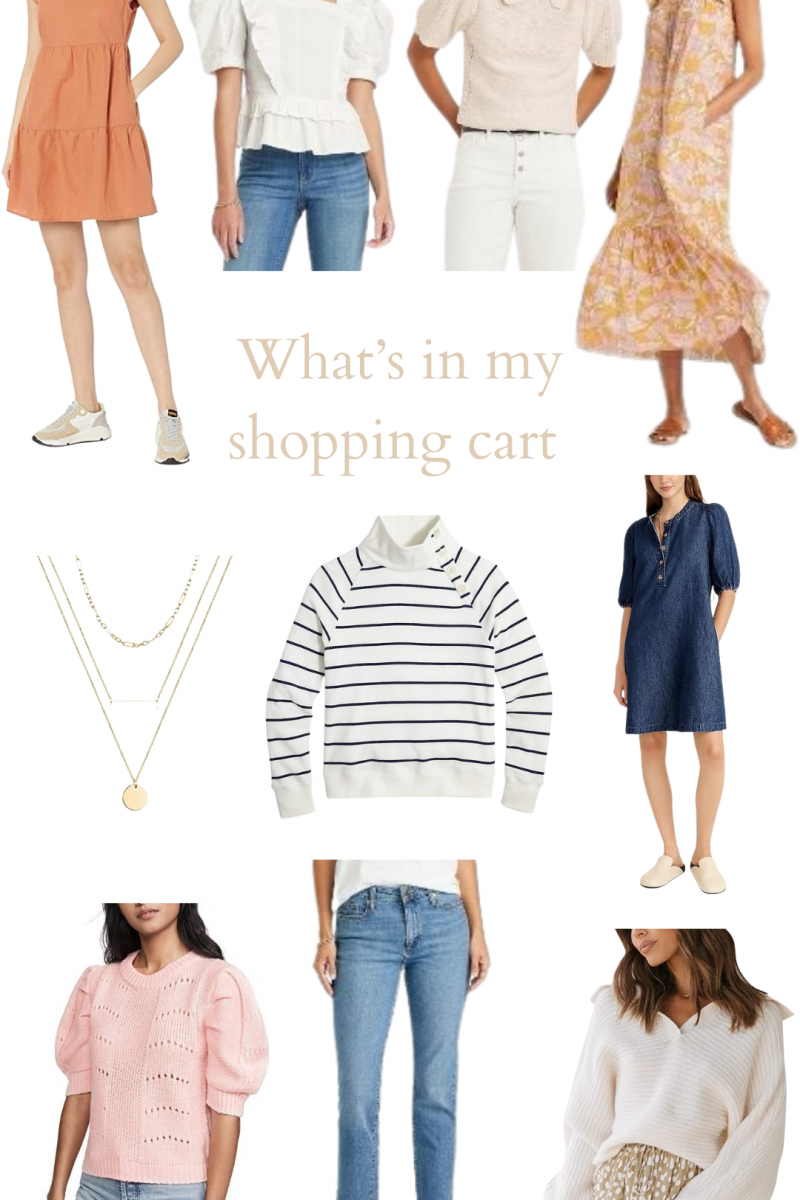 What's In My Shopping Cart!